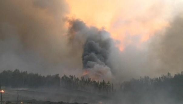 Катастрофа в Португалии: более 50 человек сгорели заживо в своих машинах