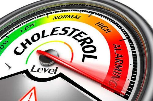 Как снизить уровень холестерина в домашних условиях