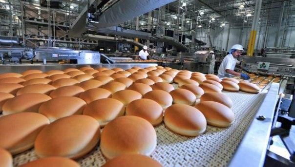Четырнадцать фактов о еде в Макдоналдсе, узнав которые вы позабудете дорогу в него