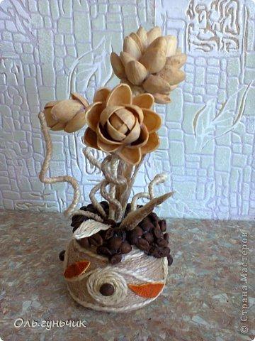 Как сделать цветы из фисташек - Ubolussur.ru