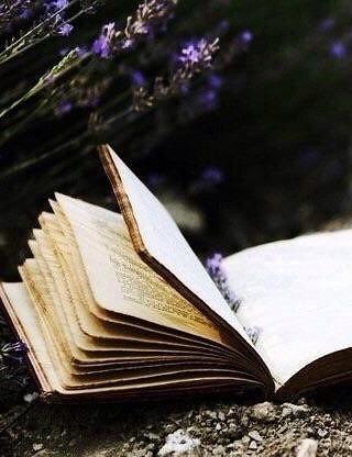 9 трогательных романов об одиночестве
