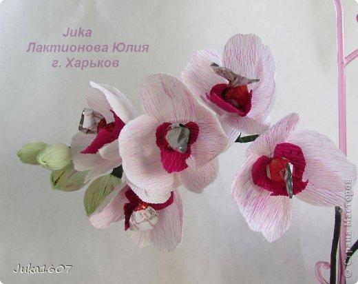Мастер класс орхидея из гофрированной бумаги и конфет своими руками 8