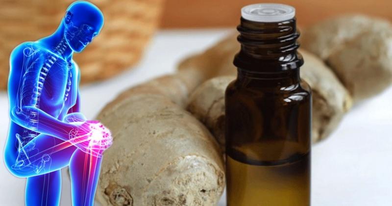 Самодельное имбирное масло вместо обезболивающих и антибиотиков: природная альтернатива многим химическим препаратам из аптеки