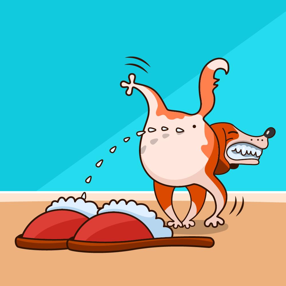 10 анекдотов от шутников рунета