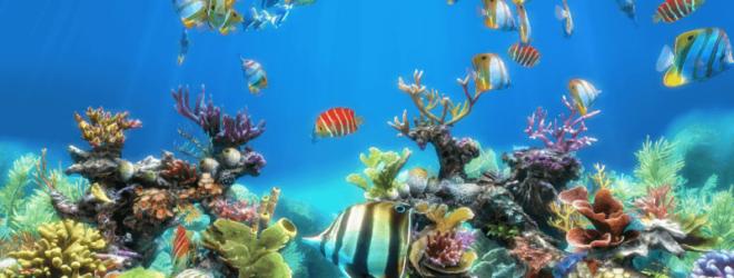 25 самых больших аквариумов в мире