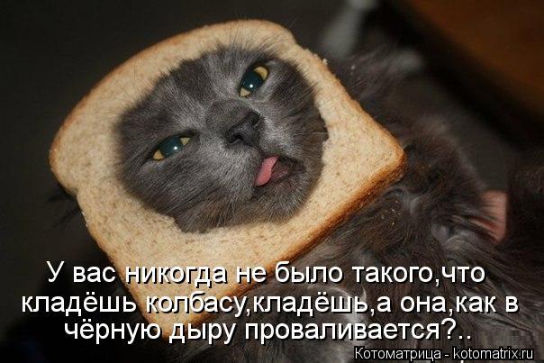Котоматрица: У вас никогда не было такого,что кладёшь колбасу,кладёшь,а она,как в чёрную дыру проваливается?..