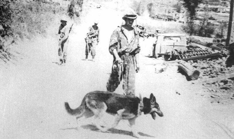 Саперы Афгана
