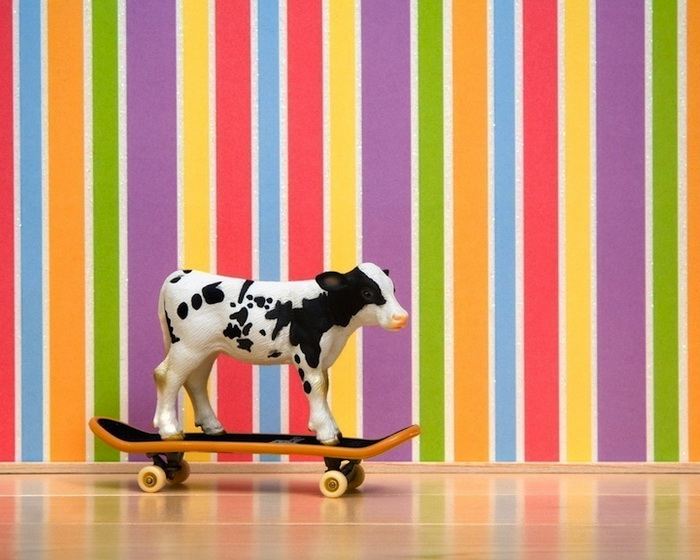 Тайная жизнь игрушек в фотопроекте Джеффа Фрисена. Теленок на скейтборде