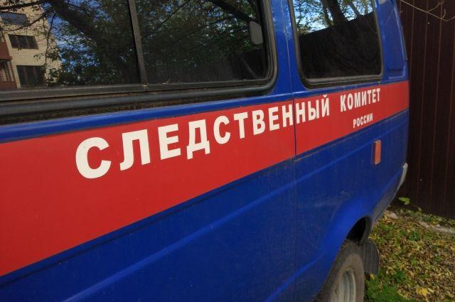 На Урале финалистку национального конкурса красоты убили при продаже авто