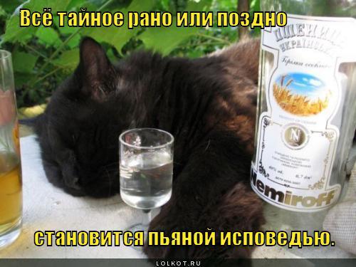 Всё тайное рано или поздно становится пьяной исповедью.