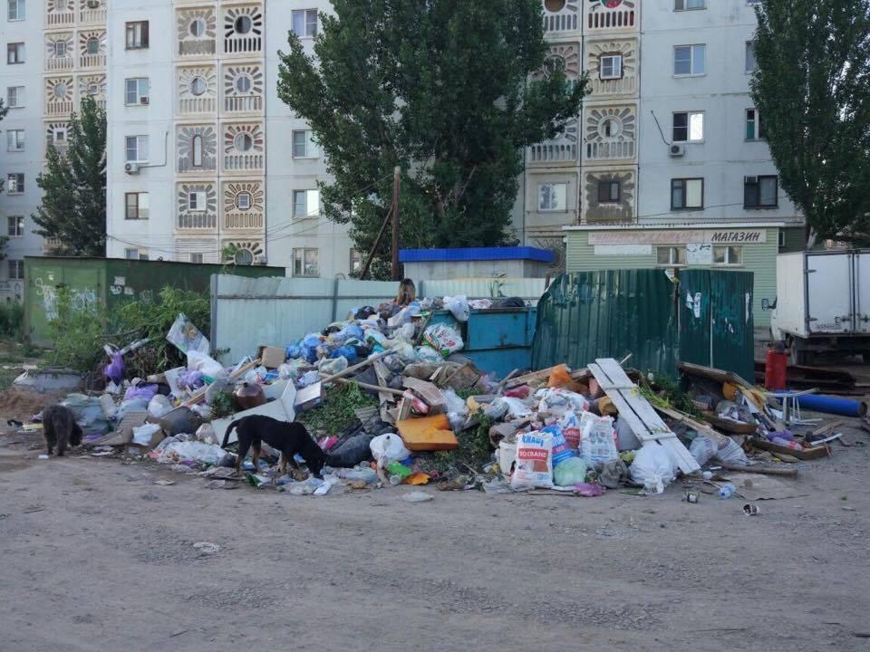 Астраханский мусорный коллап…
