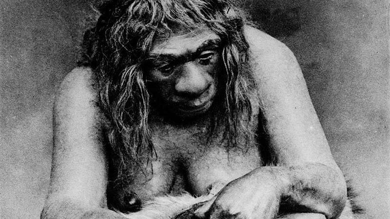 Стало известно, что неандертальцы скрещивались с неизвестным видом, о котором учёные ничего пока не знают интересно, история, наука, ученые, факты, эволюция