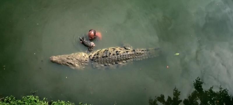 Dzhilberto Shedon i krokodil Pocho 4