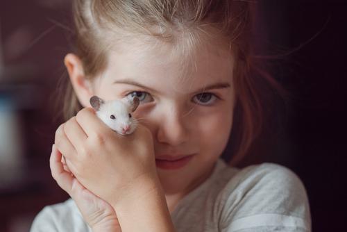 Девочка принесла в ветклинику хомячка, который уже 3 дня не двигался...
