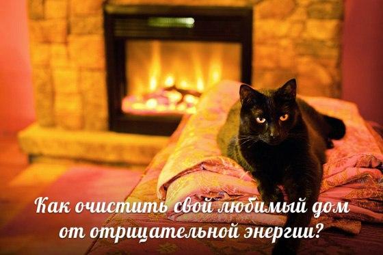 Мир вашего дома