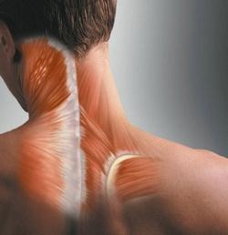 Мышечная боль: причины, лечение