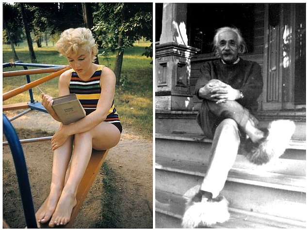 IQ Мерилин Монро был выше, чем у Эйнштейна