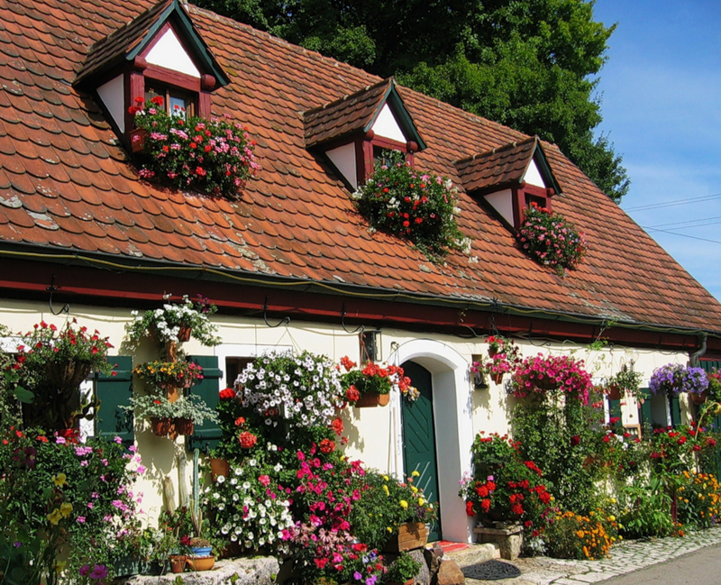 Весеннее настроение: дома в цветах