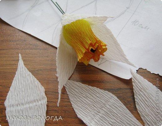 Нарциссы из гофрированной бумаги мастер класс