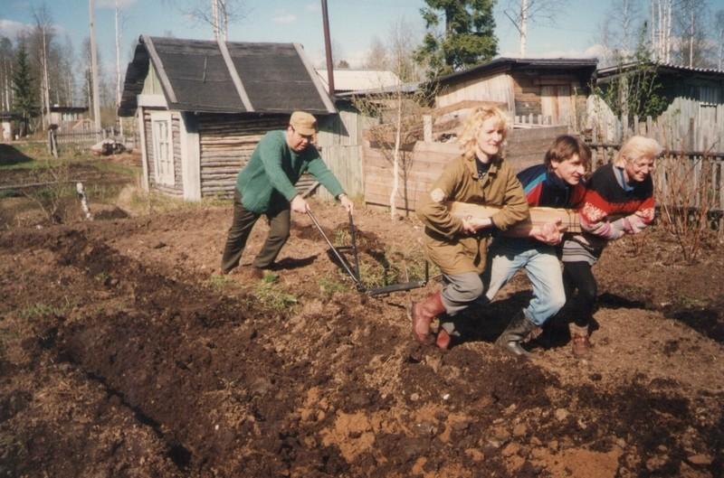 Друзья, водка и огород
