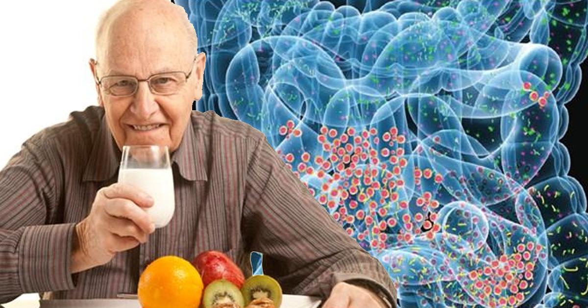 Почему важно заботиться о кишечной флоре, особенно после 50 лет?