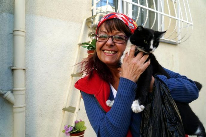 """""""Этот мир не только для людей!"""" Женщина необычным способом спасает бездомных кошек от холодов"""