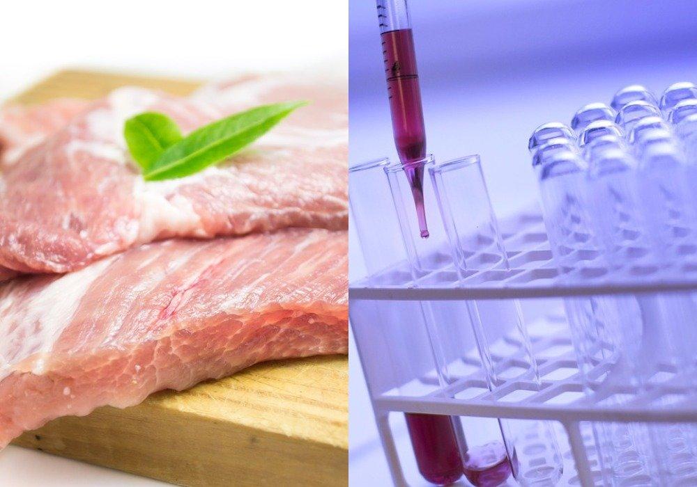 Ученые из Петербурга вырастили искусственное мясо в пробирке