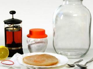 Чайный гриб: как чистить сосуды чайным грибом в домашних условиях
