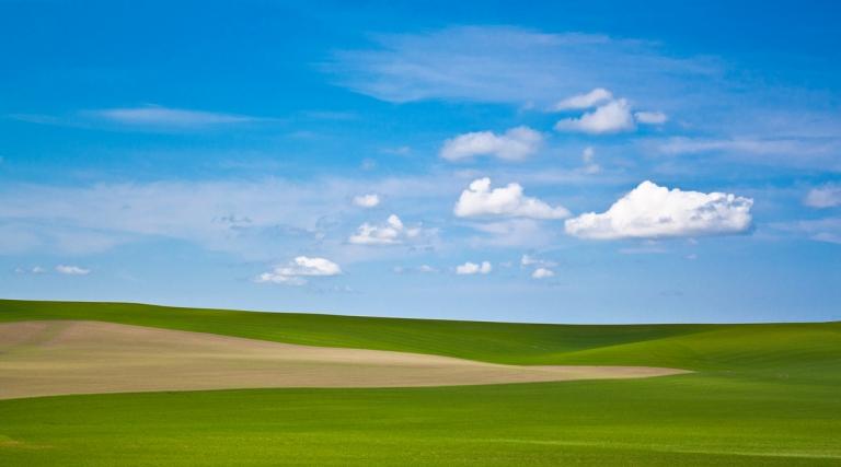 Удивительные дюны Пэлус (11 фото)