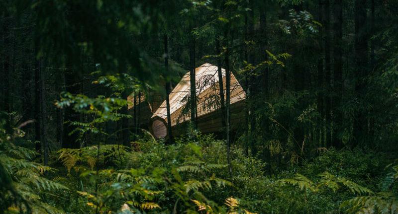 Эстонские студенты построили гигантские рупоры, чтобы слушать лес