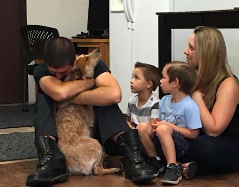 Собака не может поверить, что снова видит семью после 28 дней блуждания в лесу
