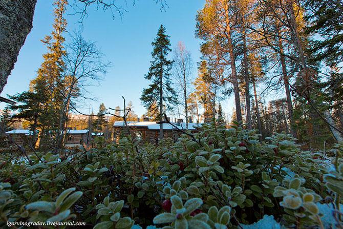 Северная Финляндия. Лапландия