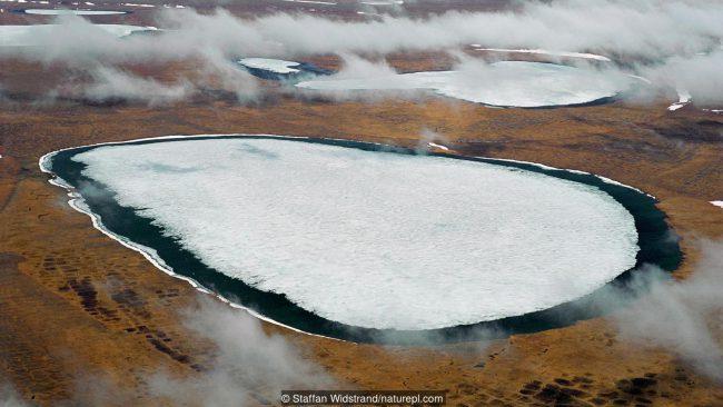 В земных ледниках пробуждаются опасные болезни