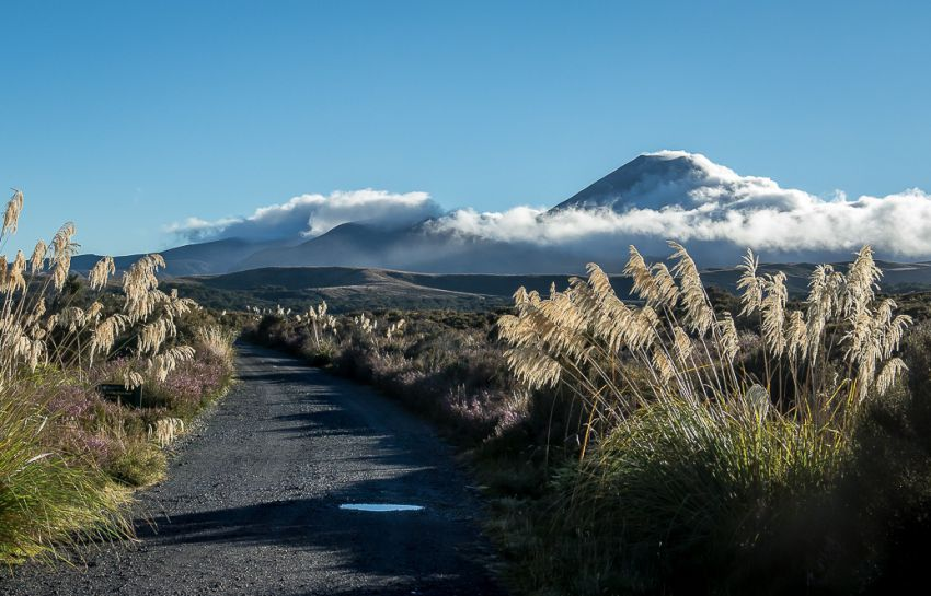 путешествие, новая зеландия, интересное