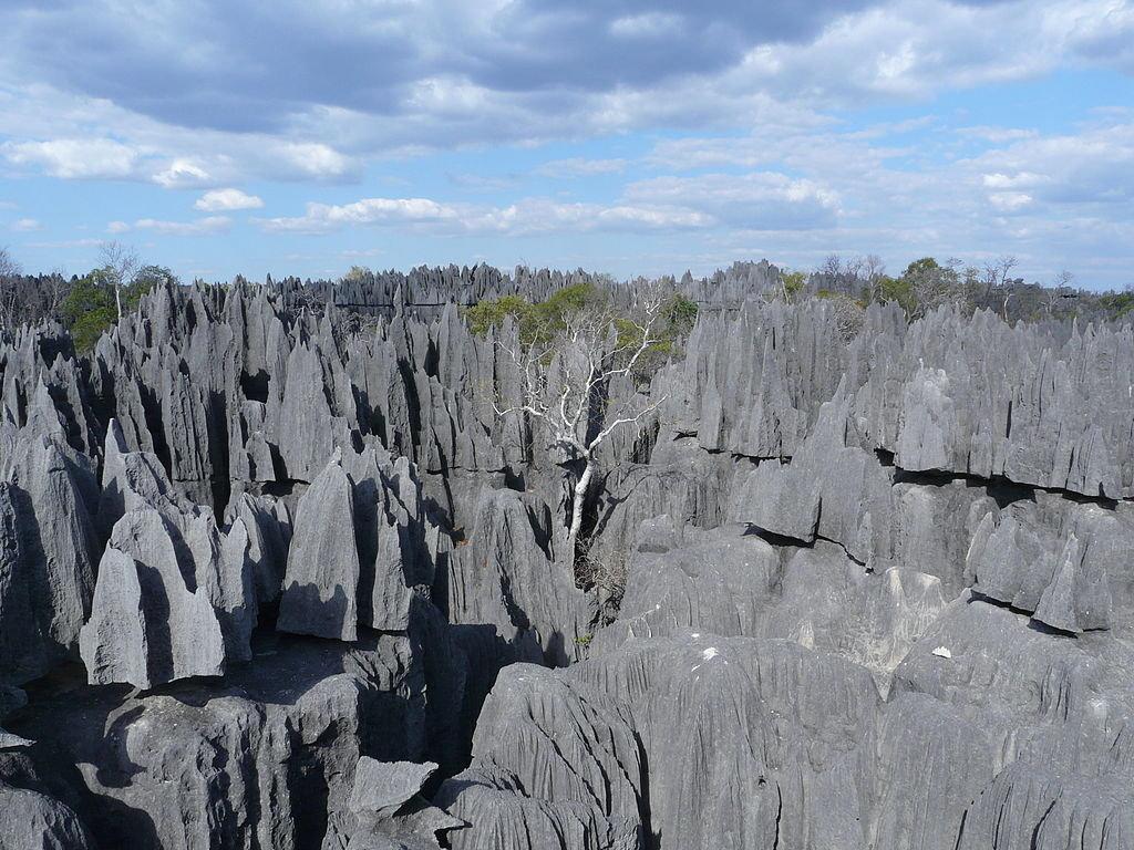 JO8fQLg Каменный лес на Мадагаскаре