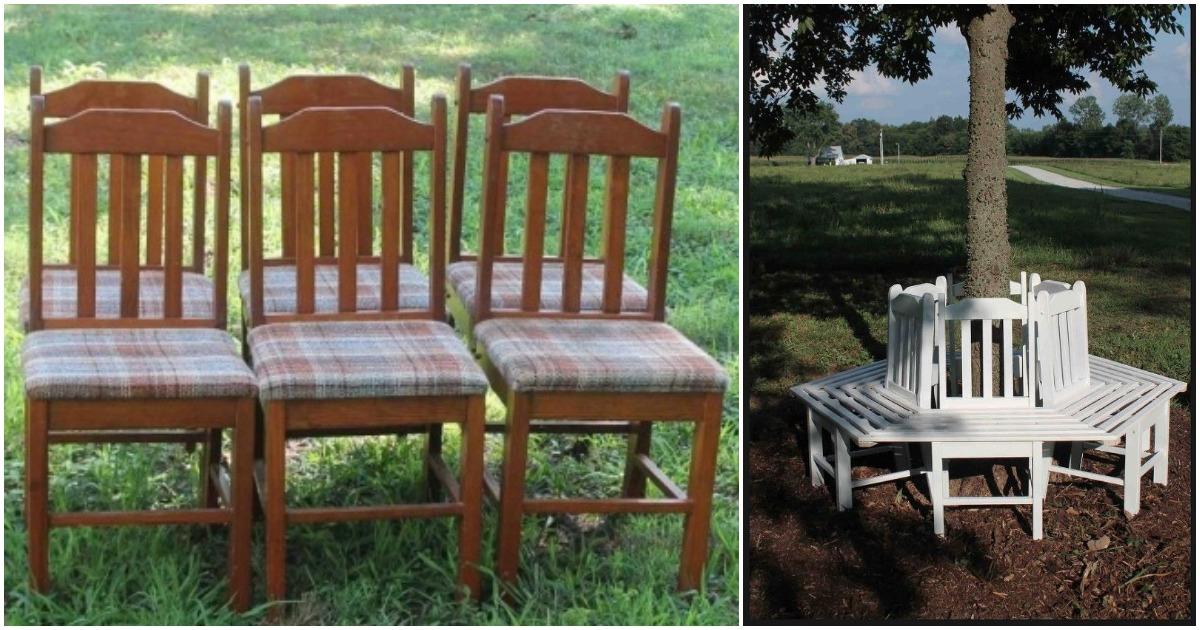 Изящная скамейка вокруг дерева из старых стульев