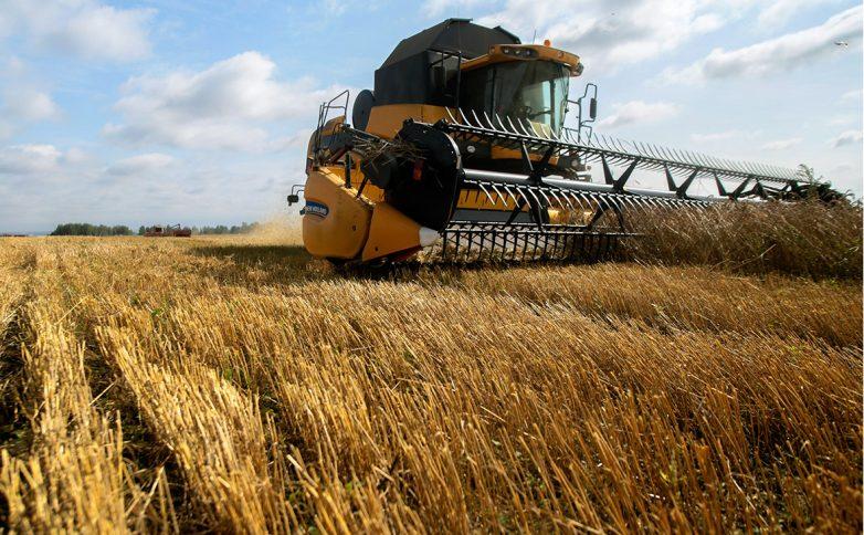 Фермеры США несут убытки из-за урожая пшеницы в России