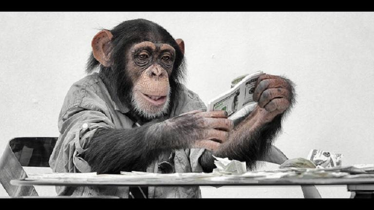 Ученые обнаружили, что деньги меняют даже обезьян.