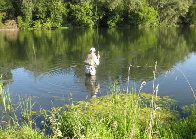 где ловят щуку в ленинградской области с берега