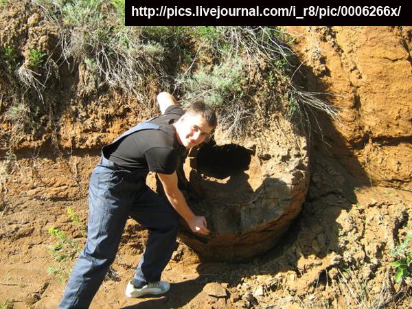 В Волгоградской области нашли странные объекты