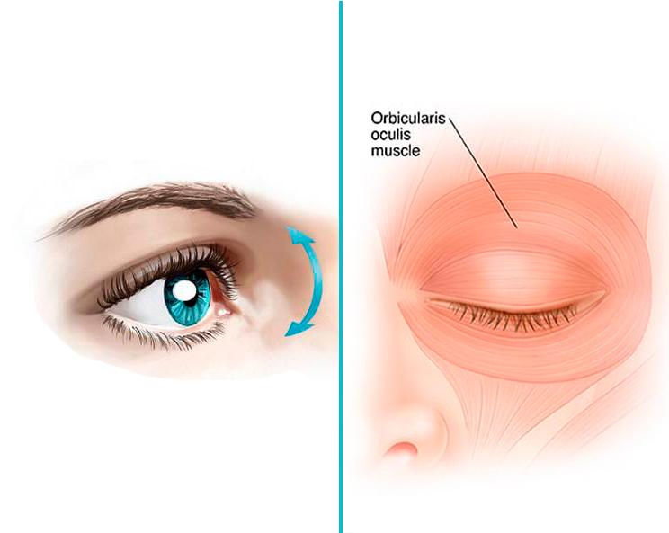 Упражнения для улучшения зрения и состояния кожи век