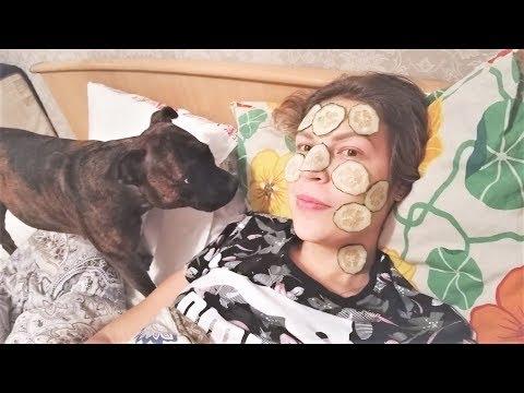 Смешные собаки 2018 Приколы с собаками Смешные приколы с животными Я РЖАЛ ПОЛ ЧАСА ДО СЛЕЗ