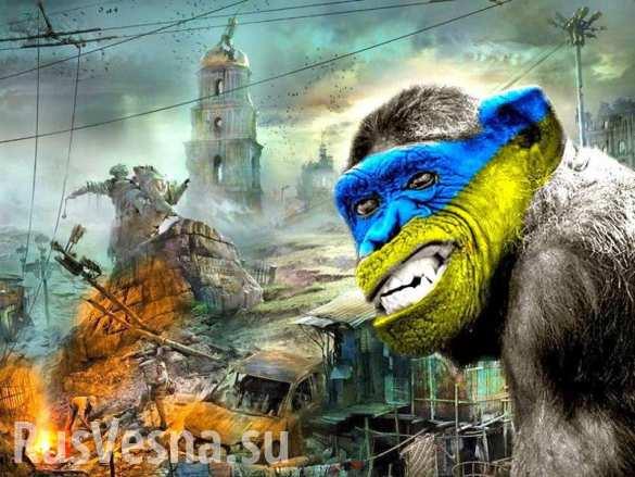 С кем надо бороться на Украине