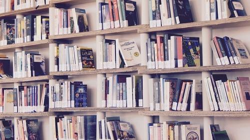 Совфед предложил разработать для школьников правила издания книг