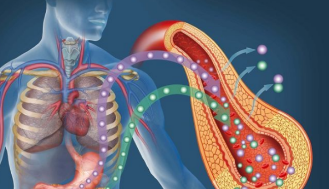 Как помочь поджелудочной железе