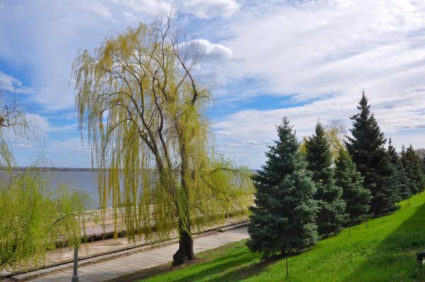 Погода в Волгограде и области на майские праздники, прогноз синоптиков
