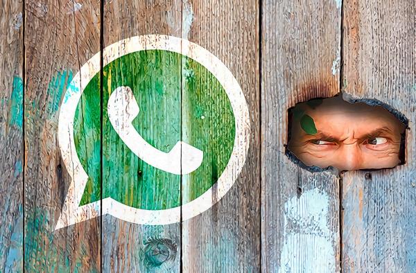 Новое обновление WhatsApp выставит ваши личные данные на обозрение всему интернету