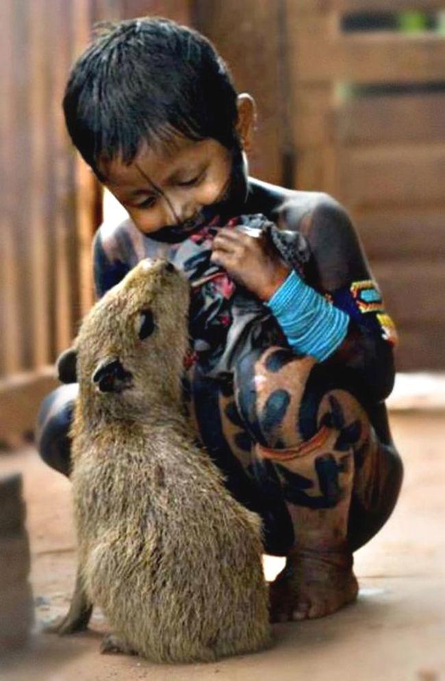 46. Экзотика без названия. Любовь, дети, животные