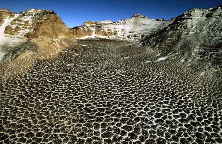 Долина Бикон (Антарктида)