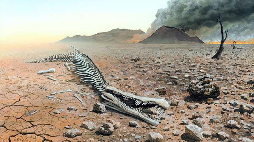 Миру угрожает крупнейшее вымирание за последние 252 миллиона лет